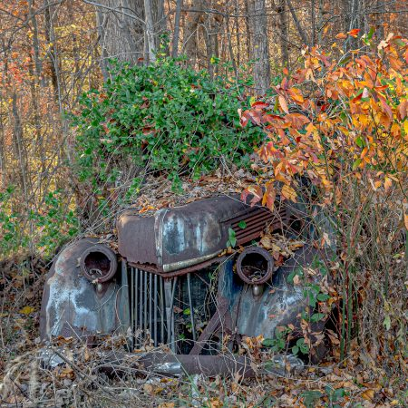 Vintage 1930s truck with vines and shrubs overtaking vehicle.