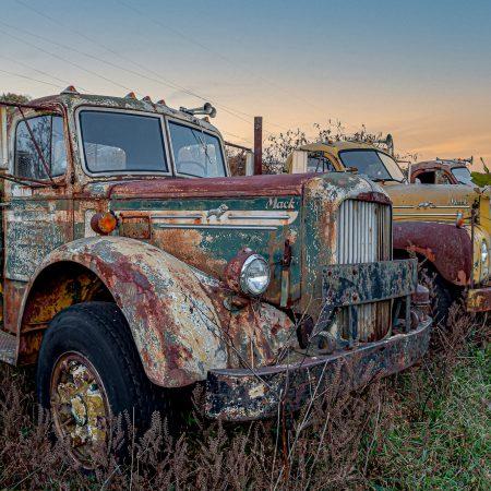 Vintage row of 1950s Mack trucks